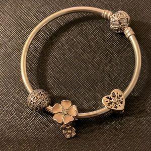 Pandora bracelet bangle!